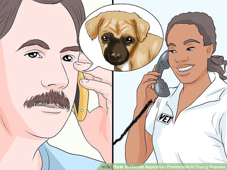 Wenden Sie sich umgehend an Ihren Tierarzt.