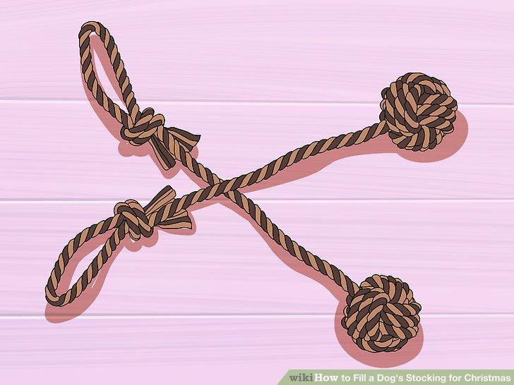 Fügen Sie ein Seilspielzeug bei.