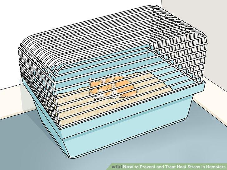 Verwenden Sie einen gut belüfteten Käfig.