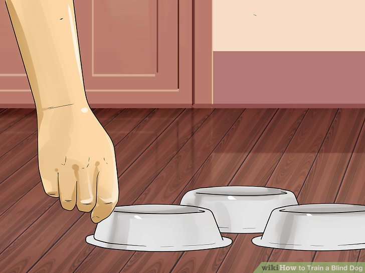 Platzieren Sie auf jeder Etage Ihres Hauses Speisen und Wasser.
