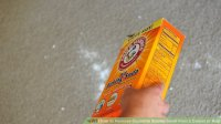 How to Remove Cigarette Smoke Smell from a Carpet or Rug ...