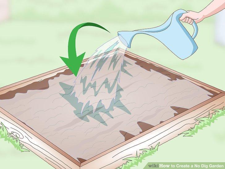 Create a No Dig Garden Step 17.jpg