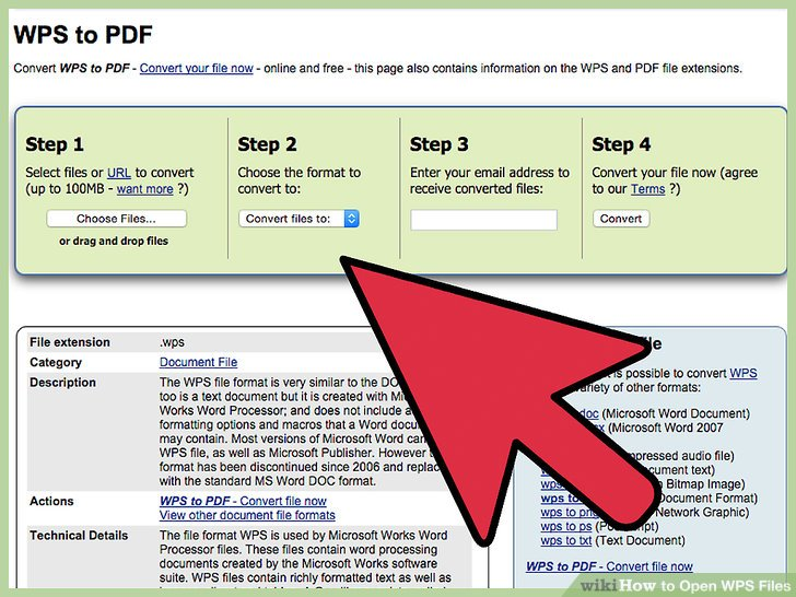 Follow the instructions displayed on the website to open the WPS file.