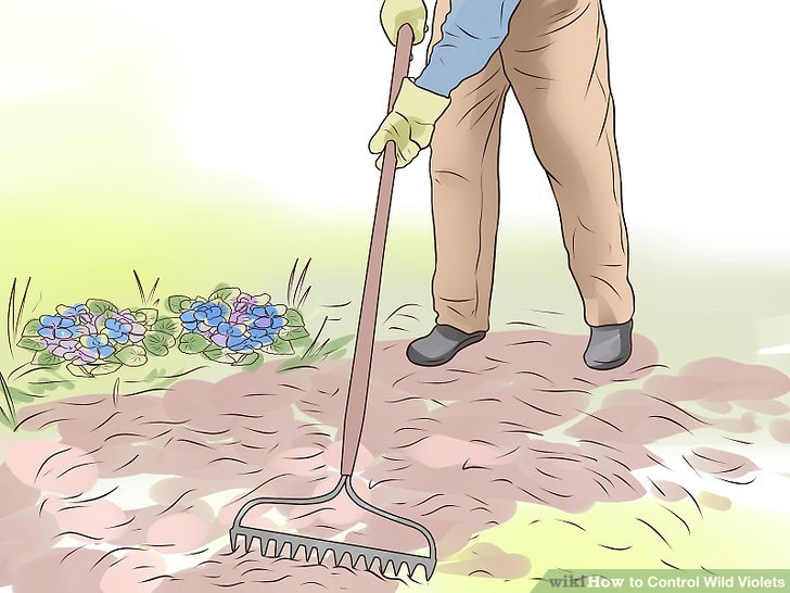 Spread mulch in problem areas.