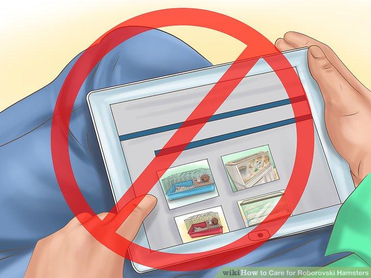 Kaufen Sie nicht online