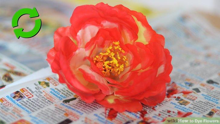 Purchase floral spray dye.