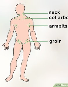 Image titled check lymph nodes step also how to steps with pictures wikihow rh