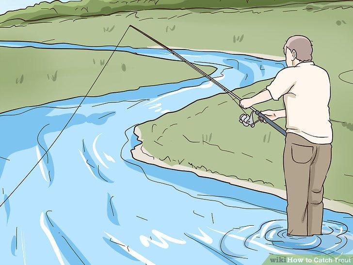 Wirf die Angelschnur leicht stromaufwärts oder in die Strömung.