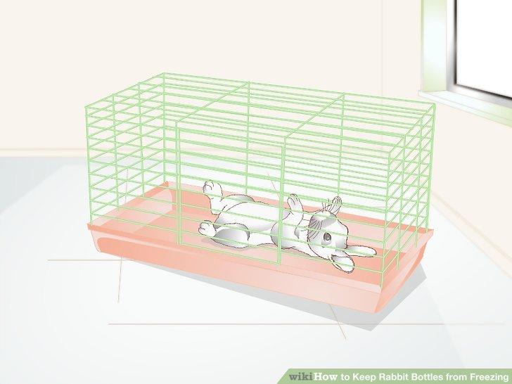 Halten Sie Ihr Kaninchen in einem unbeheizten Innenbereich.