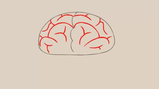easy brain diagram 7 pole trailer plug wiring 3 ways to draw a wikihow 1