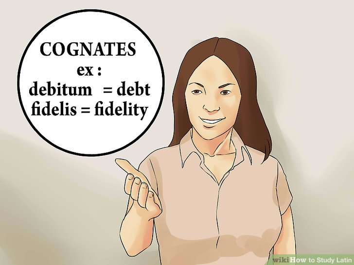 Look for cognates.