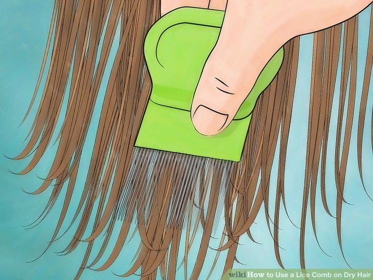 Run the lice comb through your hair.
