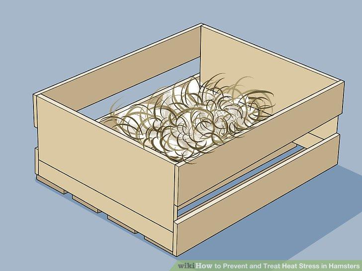 Tausche sein Haus gegen ein offenes Nest.
