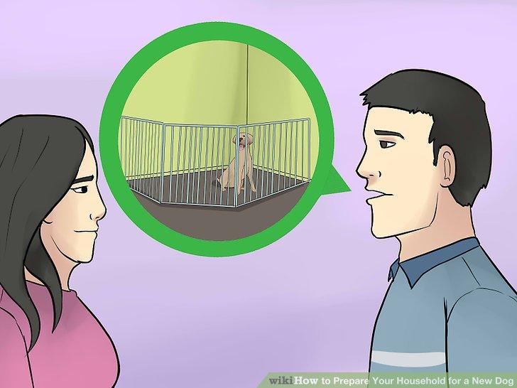Diskutieren Sie, ob der Hund drinnen lebt oder draußen gehalten wird.