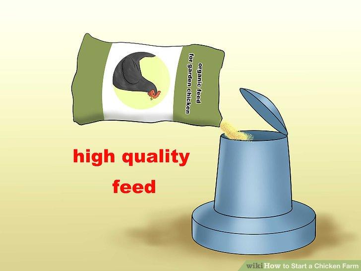Futtermittel in großen Mengen kaufen.