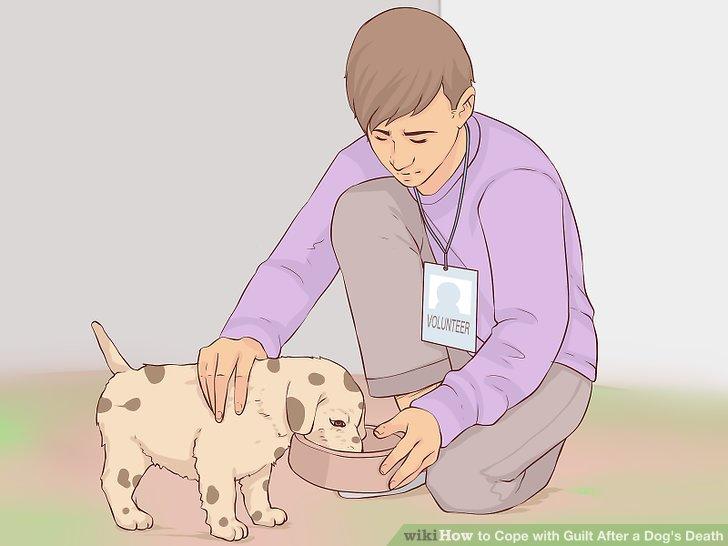 Helfen Sie Ihrer Zeit mit anderen Tieren.