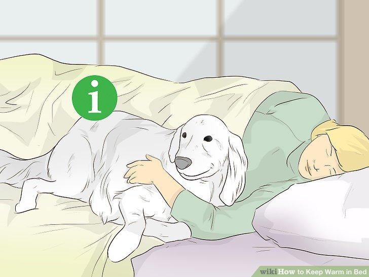 Kuscheln Sie sich mit einem Partner oder Haustier.