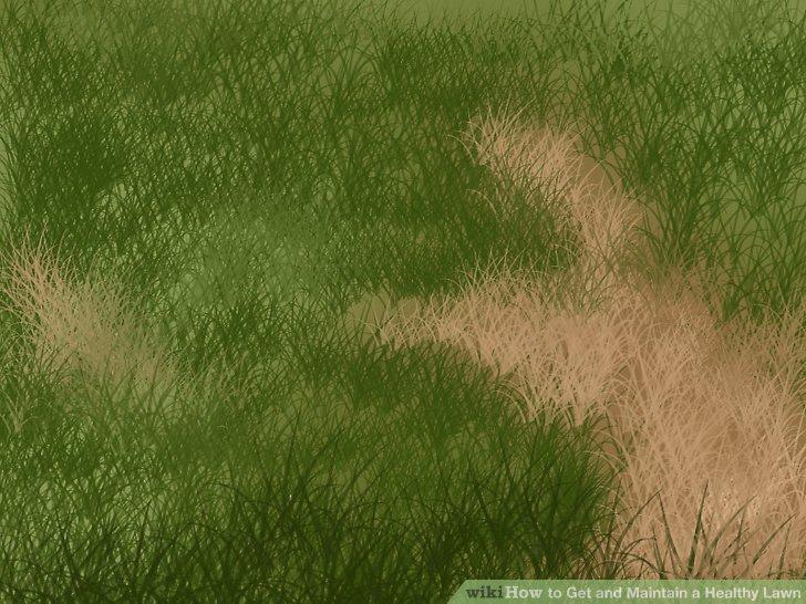 Reduzieren Sie im Winter den Einsatz von Rasen oder Rasen, auf dem Sie Schwierigkeiten haben.