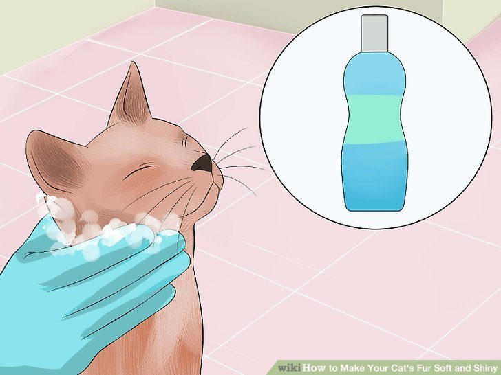 Verwenden Sie das richtige Shampoo.
