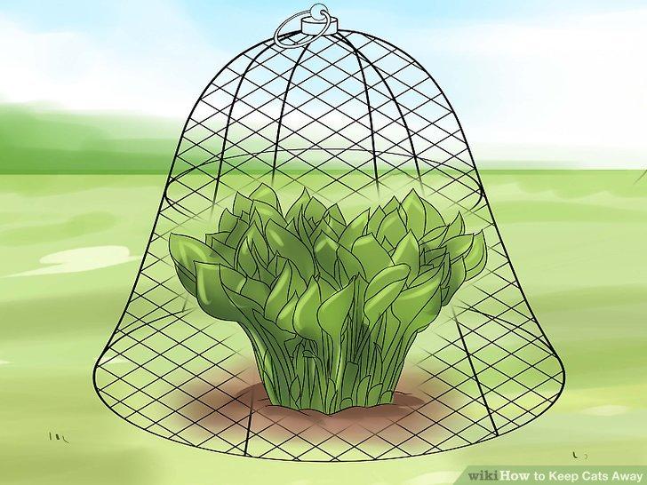 Blumen- und Pflanzenbeete schützen.