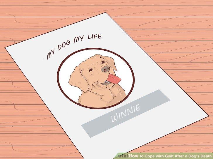 Machen Sie ein Sammelalbum über das Leben Ihres Hundes.