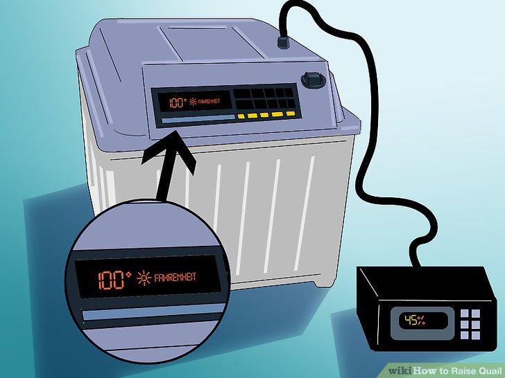 Stellen Sie die Temperatur des Inkubators so ein, dass er 40 Grad Celsius beträgt.