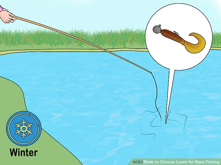 How to Choose Lures for Bass Fishing - Practical Information