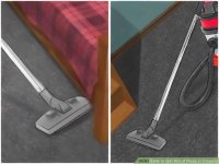 4 Easy Ways to Get Rid of Fleas in Carpets - wikiHow