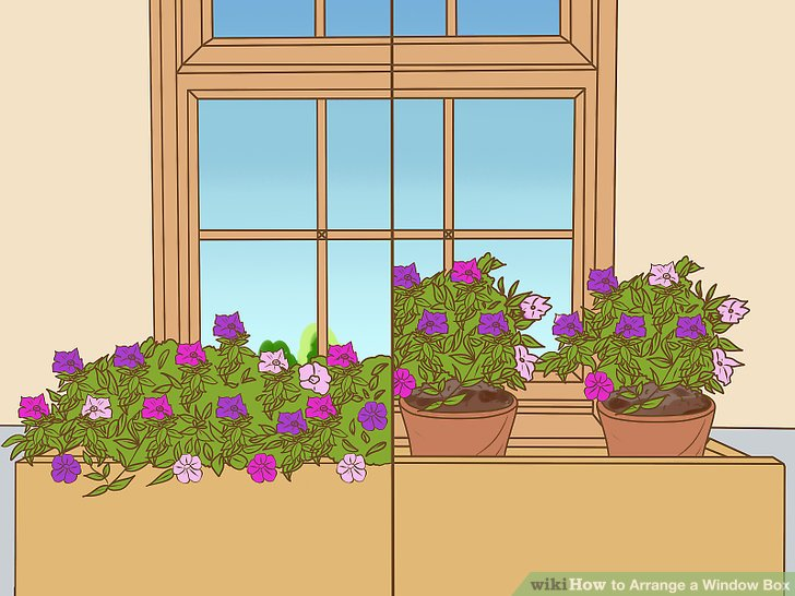 How to Arrange a Window Box 13 Steps with Pictures
