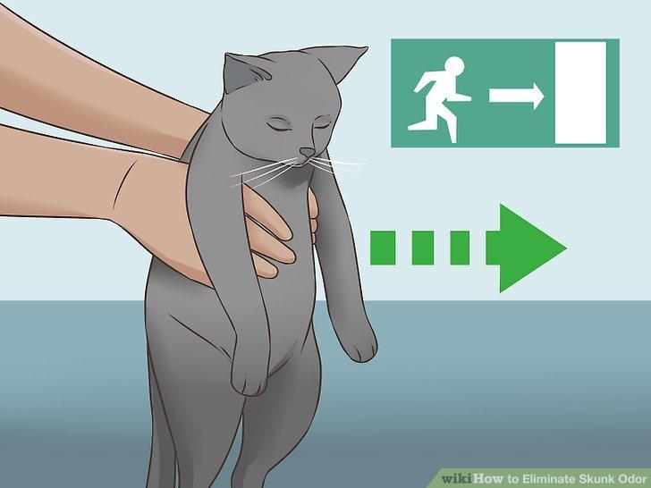 Eliminate Skunk Odor Step 6 Version 2.jpg