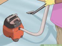 3 Ways to Get Paint Out of Carpet - wikiHow
