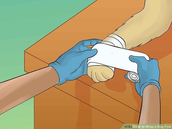 Tragen Sie eine Schicht elastischen Belags auf.