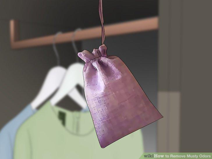 Hängen Sie Maschensäcke aus zerkleinerten Vulkangesteinen an feuchten Orten auf.