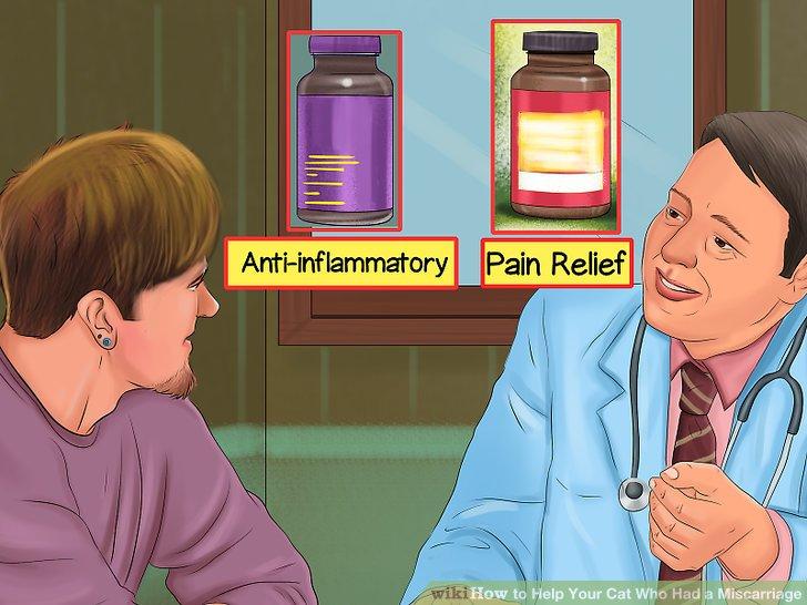 Fragen Sie Ihren Tierarzt nach Medikamenten.
