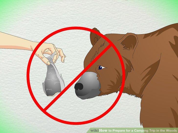 Füttern Sie keine wilden Tiere!