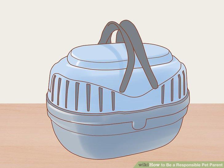 Wählen Sie einen Gepäckträger oder Gurt, der groß genug ist, um Ihr Haustier zu transportieren.
