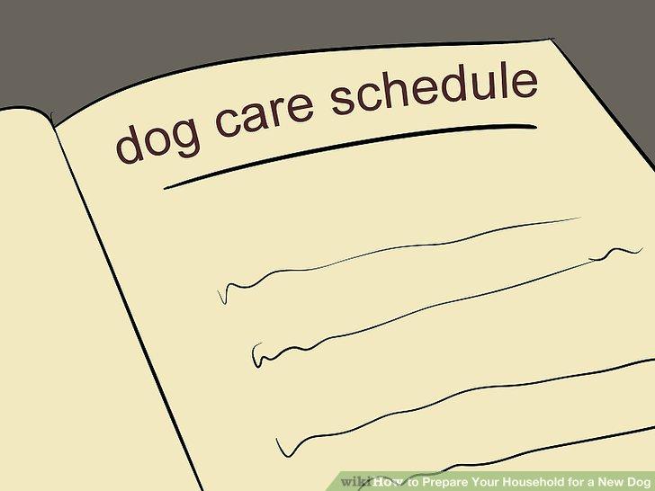 Verstauen Sie Reinigungsmittel und andere Chemikalien so, dass Ihr Hund sie nicht erreichen kann.