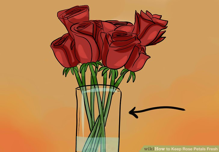 Halten Sie Ihre Schnittblumen kühl, bis Sie bereit sind, die Blütenblätter zu pflücken.