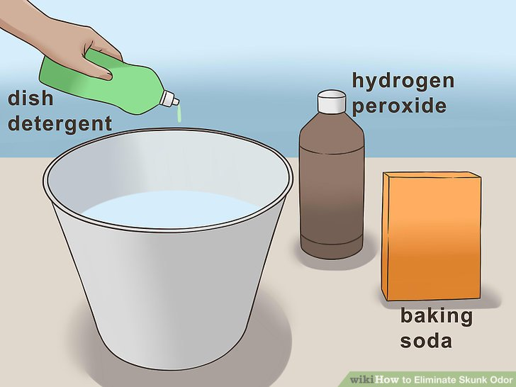 How to Eliminate Skunk Odor
