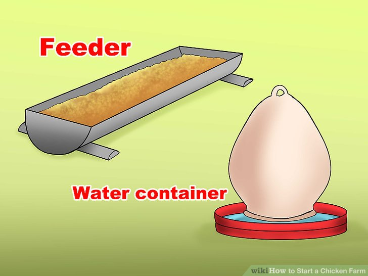 Fügen Sie einen Feeder und Wasserbehälter hinzu.