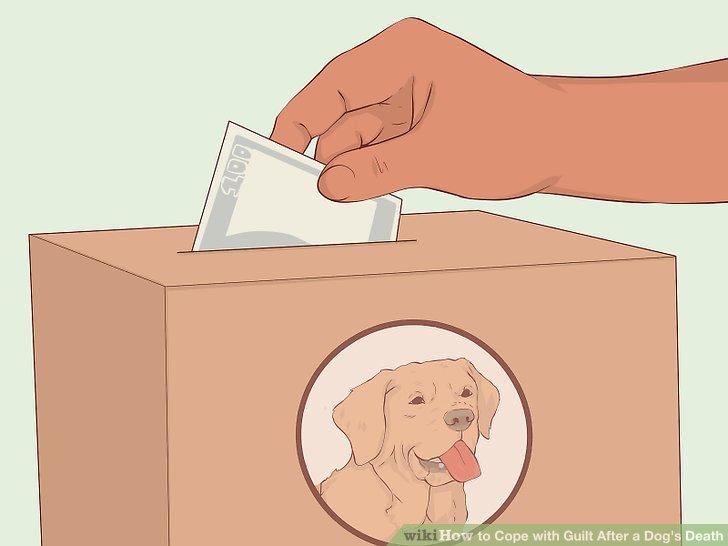 Tun Sie etwas Positives im Gedächtnis Ihres Hundes.
