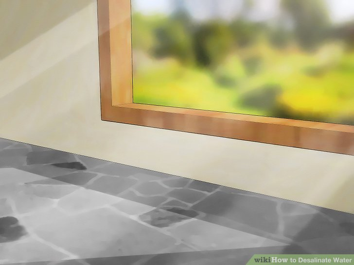 Make sure you have access to a spot with direct sunlight, like a window sill.