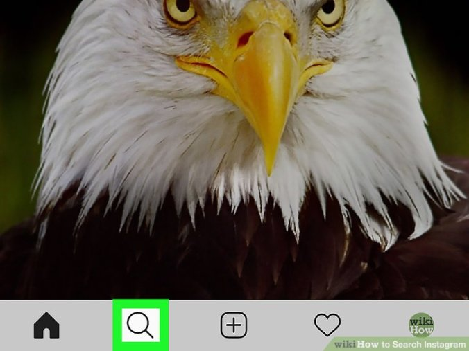 Search Instagram Step 2 Version 3.jpg