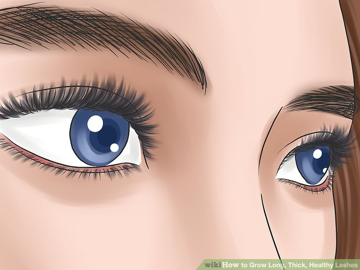 How To Grow Long Thick Healthy Lashes Practical Information
