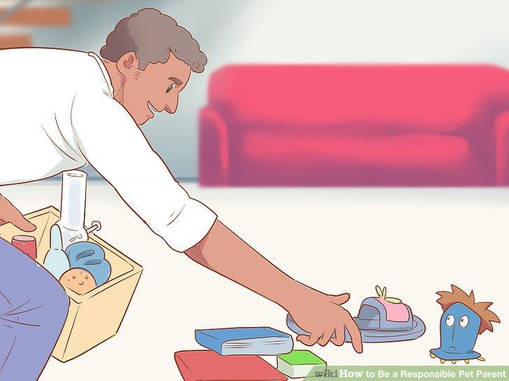 Entfernen Sie schädliche und zerbrechliche Gegenstände aus dem Spielfeld Ihres Haustieres.