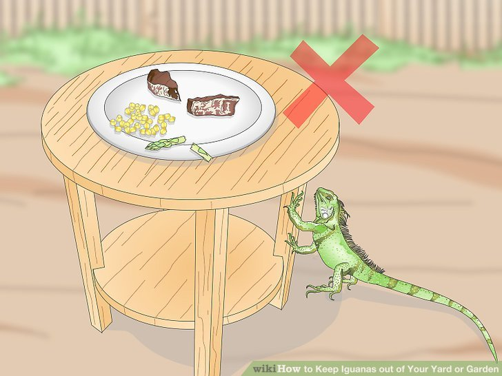 Lassen Sie Ihr Essen nicht unbeaufsichtigt.