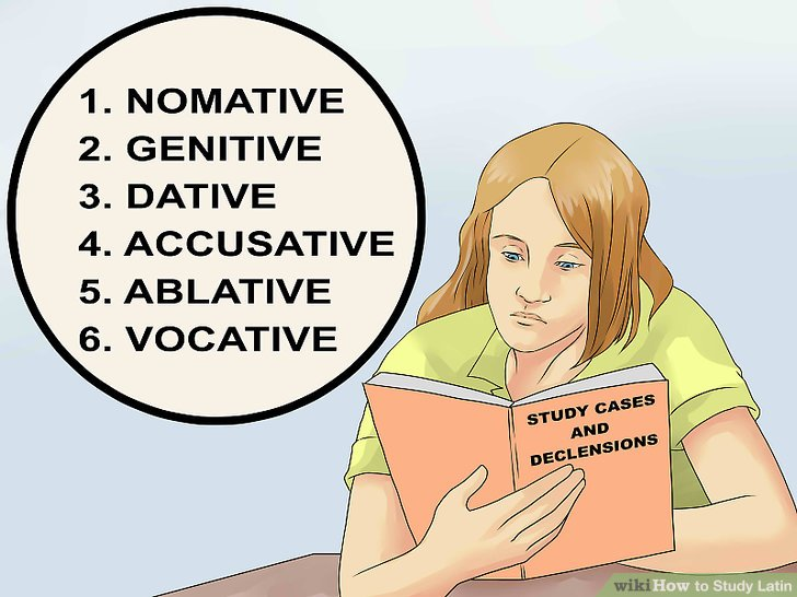 Study cases and declensions.