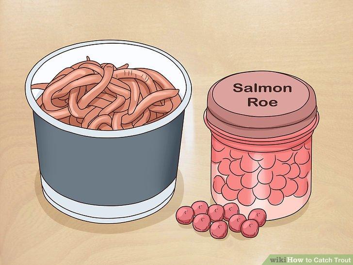 Kaufen Sie Regenwürmer, Lachsrogen oder Maiskörner in Ihrem örtlichen Angelgeschäft.