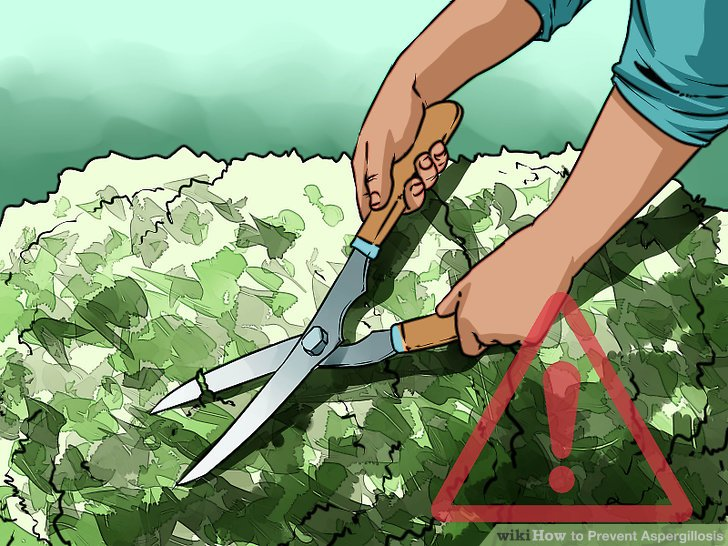 Limit gardening and lawn work, if you are immunocompromised.