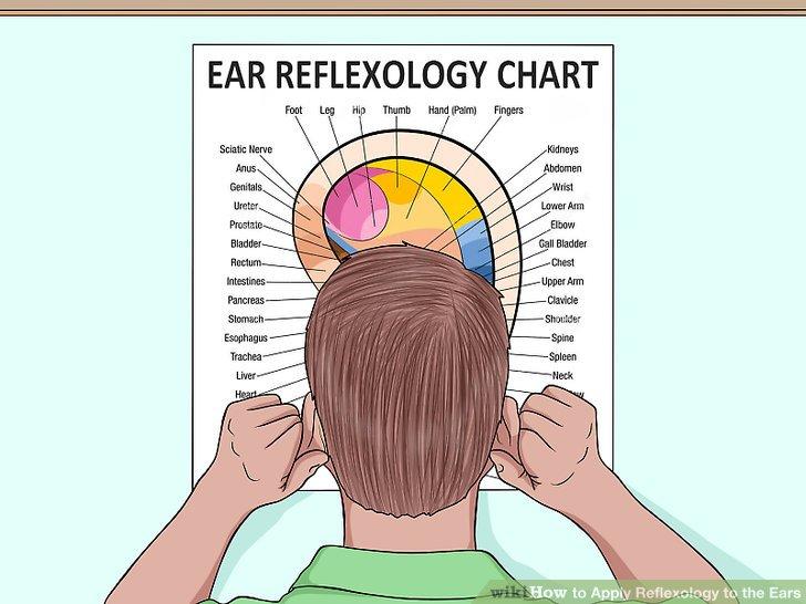 Wie ist es gemacht? - Wie Bewerben Sie sich Reflexzonen an den Ohren